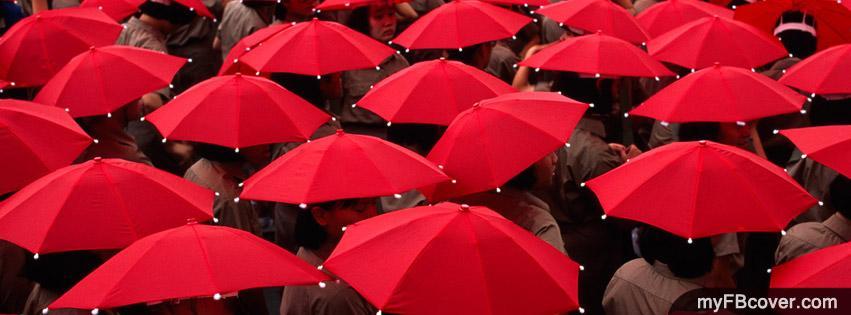 umbrella food cover | eBay - Electronics, Cars, Fashion